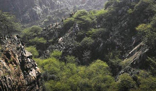 Aerial seeding established to make the Aravalli's Greener